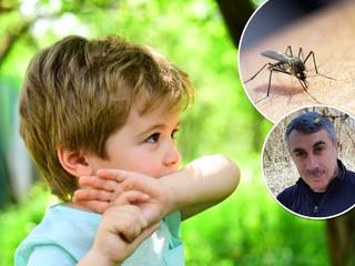 Доктор Комаровский пояснил, как помочь пострадавшему от укуса насекомого