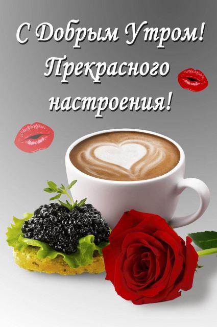 Доброе утро ☀️☀️☀️.