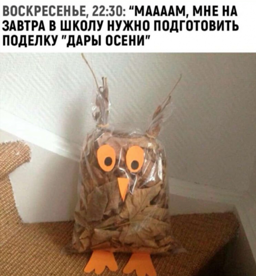 Фотография 2019-09-15 04:13:53